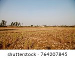 rural india agriculture land... | Shutterstock . vector #764207845