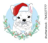portrait of cute french bulldog ... | Shutterstock .eps vector #764227777