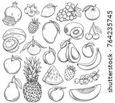 vector sketch fruits and... | Shutterstock .eps vector #764235745