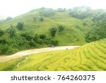 Scenery With Rice Fields In...