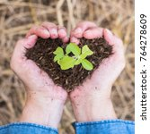Small photo of New life of young tree planting growing on soil in volunteer's or farmer's heart hands for nature, go green, csr campaign, arbor day, Tu Bishvat/Tu B'Shevat, world environment protection concept