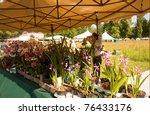 castle of masino  italy   may 1 ... | Shutterstock . vector #76433176