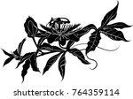 silhouette flower passion... | Shutterstock .eps vector #764359114