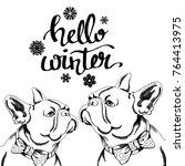 dog vector illustration breed... | Shutterstock .eps vector #764413975