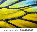 wings of butterflies at high... | Shutterstock . vector #764474941