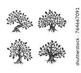 huge and sacred oak tree... | Shutterstock .eps vector #764667091