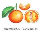 mandarin isolated on white... | Shutterstock . vector #764753341