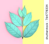 green leaves and copy space on... | Shutterstock . vector #764778334