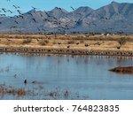 Small photo of White Water Drawl, Arizona