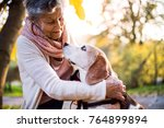 Stock photo an elderly woman with dog in autumn nature 764899894