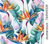 watercolor tropical seamless... | Shutterstock . vector #764945539