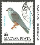Small photo of Hungary - stamp printed in 1983, Issue World Wildlife Fund, Series Protected birds of prey, Red footed Falcon, Falco vespertinus