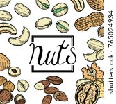 hand drawn colored organic nuts ... | Shutterstock .eps vector #765024934