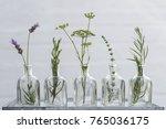 lavender flower  thyme ... | Shutterstock . vector #765036175