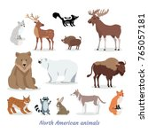 north american animals cartoon... | Shutterstock .eps vector #765057181