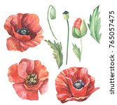 watercolor set of red poppies... | Shutterstock . vector #765057475