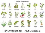 chinese traditional medicinal... | Shutterstock .eps vector #765068011