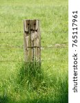 Small photo of Wooden Paddock Fence, Fence Plank