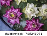 making decoration lotus flower... | Shutterstock . vector #765249091