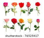 Assorted Ten Stemless Roses...