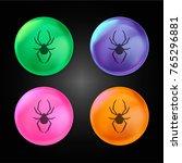 spider arthropod animal...   Shutterstock .eps vector #765296881