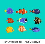 marine life tropical colorful... | Shutterstock .eps vector #765298825