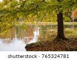 autumn in the park near st.... | Shutterstock . vector #765324781