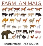 Stock vector set of vector farm animals side view 765422245