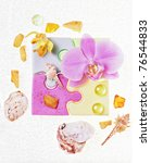 soap and a orchid | Shutterstock . vector #76544833
