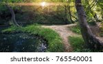 creek in the forest. nature... | Shutterstock . vector #765540001