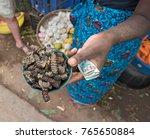 small bowl of roasted mopane...   Shutterstock . vector #765650884