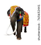 elephant has beautiful and... | Shutterstock . vector #765652441