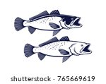 image sea trout | Shutterstock .eps vector #765669619