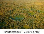 pantanal landscape  green lakes ... | Shutterstock . vector #765715789