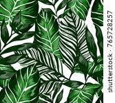 watercolor seamless pattern... | Shutterstock .eps vector #765728257