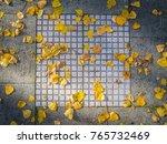 dry leaves on bright of tiled... | Shutterstock . vector #765732469
