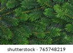 background a texture furry tree ... | Shutterstock . vector #765748219