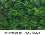 background a texture furry tree ... | Shutterstock . vector #765748225