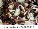 Small photo of Amazonian regional alive crab displayed for sale in famous Ver-o-Peso public market in Belem do Para, Brazil. Exotic gastronomy concept. Background with selective focus