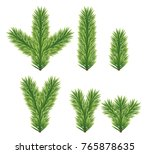 set of fir branches. christmas... | Shutterstock .eps vector #765878635