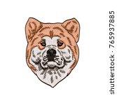 akita vector drawing... | Shutterstock .eps vector #765937885