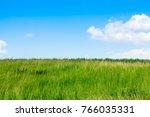 a green field on a hill grows... | Shutterstock . vector #766035331