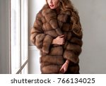 a beautiful woman in a fur coat ...   Shutterstock . vector #766134025