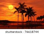 Palm Tree Silhouette On...