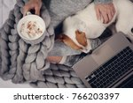 woman in cozy home clothes...   Shutterstock . vector #766203397