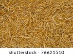Close Up Of Ground. Texture Of...