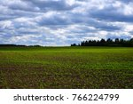 organic agricultural plants... | Shutterstock . vector #766224799