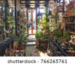 A Lot Of Plants In Garden Shop...
