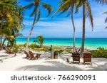 chairs under the palm trees on... | Shutterstock . vector #766290091