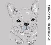 cute black   white french...   Shutterstock .eps vector #766309861